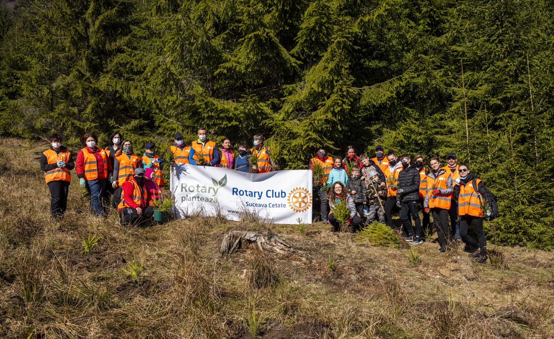 Rotary Club Suceava Cetate plantează